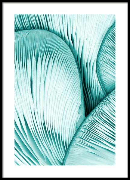 Mint Oyster Poster in the group Posters & Prints / Sizes / 50x70cm | 20x28 at Desenio AB (10042)