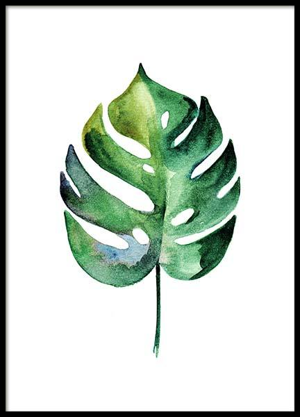 Monstera Aquarell Two Poster in the group Posters & Prints / Botanical at Desenio AB (10070)