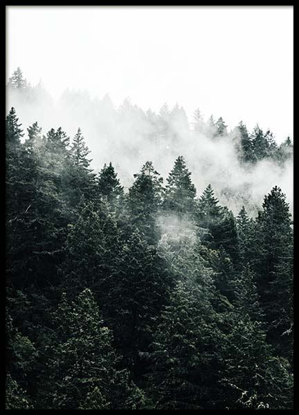 Pine Tree In The Fog Poster in the group Posters & Prints / Nature at Desenio AB (10090)