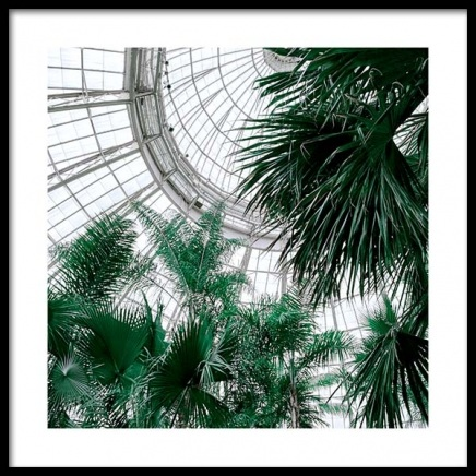 Botanical Garden No1 Poster in the group Posters & Prints / Sizes / 50x70cm | 20x28 at Desenio AB (10141)