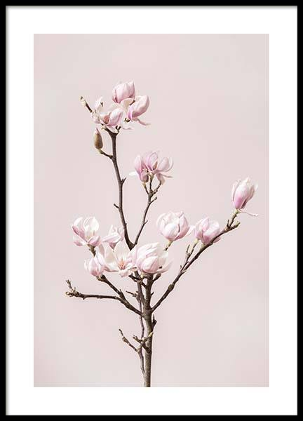 Spring Dream Poster in the group Posters & Prints / Botanical at Desenio AB (10212)