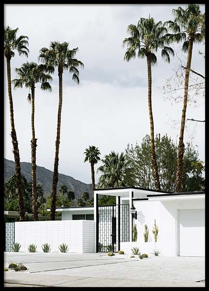 White House Palm Springs Poster in the group Posters & Prints / Nature at Desenio AB (10221)