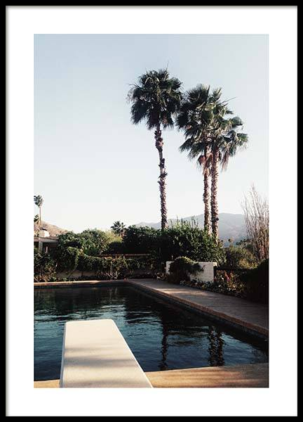 Palm Springs Pool Poster in the group Posters & Prints / Nature at Desenio AB (10222)