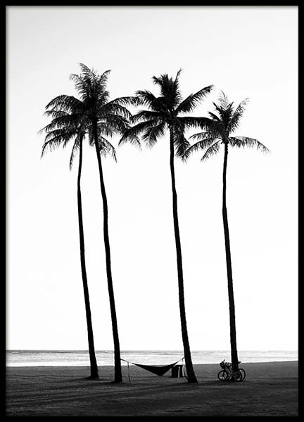 Palm Trees On Beach Poster in the group Posters & Prints / Black & white at Desenio AB (10233)