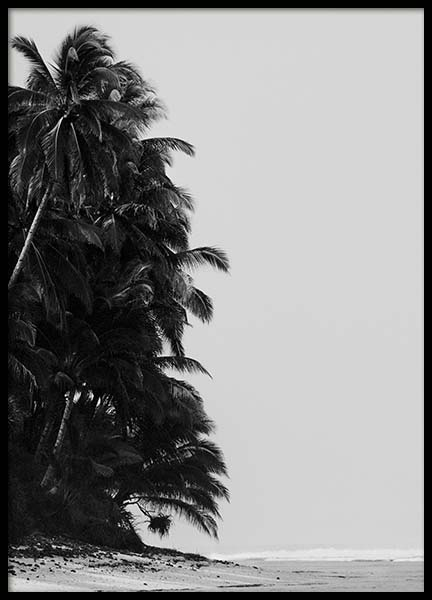 Palm Trees By Sea Poster in the group Posters & Prints / Nature at Desenio AB (10235)