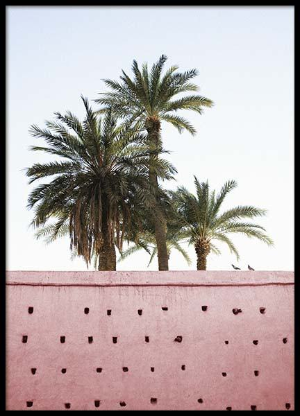 Pink Palms Poster in the group Posters & Prints / Photography at Desenio AB (10270)