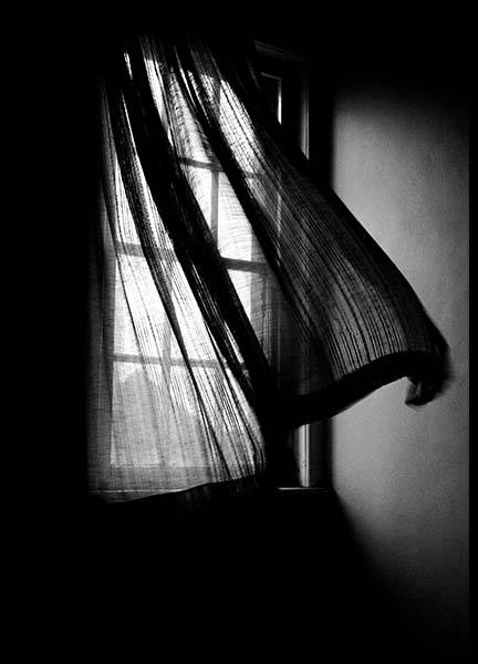 Window Breeze Poster in the group Posters & Prints / Black & white at Desenio AB (10327)