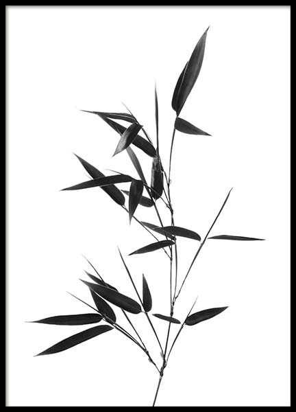 Bamboo Twig Poster