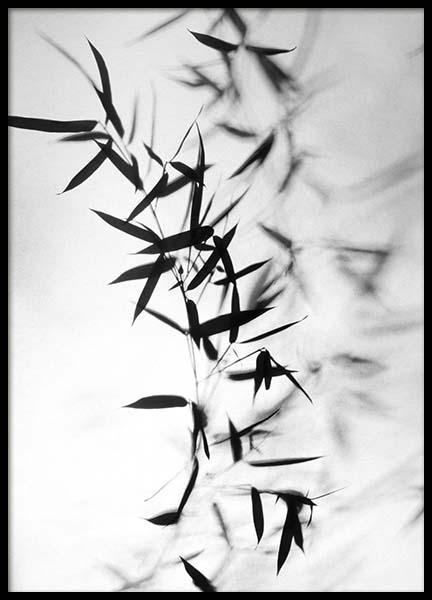 Bamboo Black Poster in the group Posters & Prints / Black & white at Desenio AB (10391)