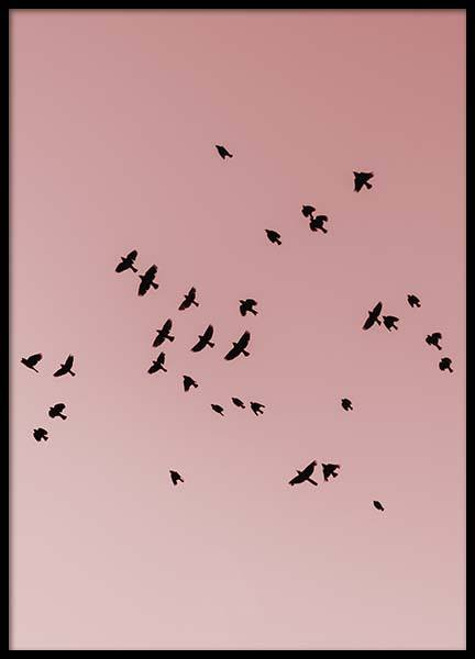 Pink Bird Sky Poster in the group Posters & Prints / Nature at Desenio AB (10444)