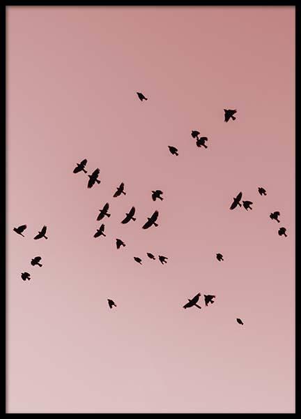 Pink Bird Sky Poster