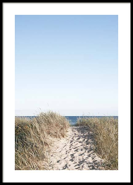 Path on beach Poster in the group Posters & Prints / Nature at Desenio AB (10477)