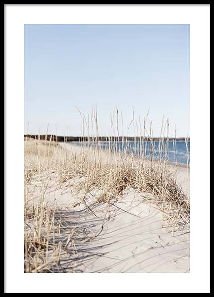 Grass by Sea Poster in the group Posters & Prints / Nature at Desenio AB (10478)