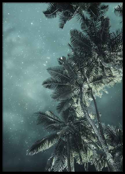 Tropical Night No3 Poster in the group Posters & Prints / Nature at Desenio AB (10647)