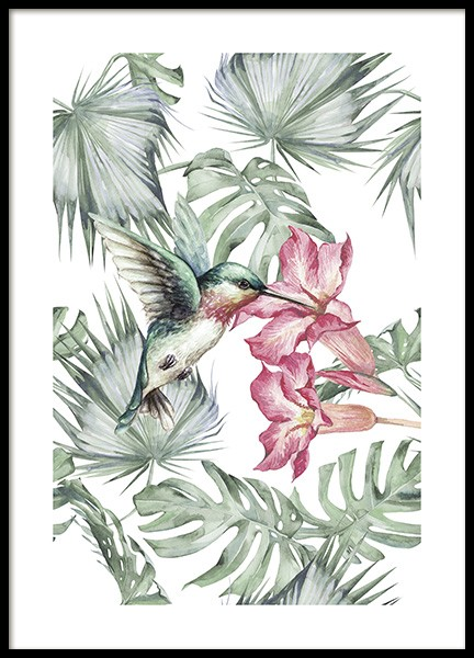 Tropical Bird No1 Poster in the group Posters & Prints / Insects & animals at Desenio AB (10648)