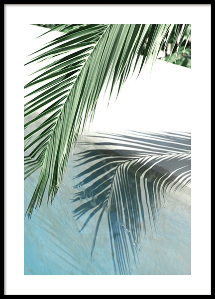 Poolside Palm Reflection Poster in the group Posters & Prints / Photography at Desenio AB (10666)