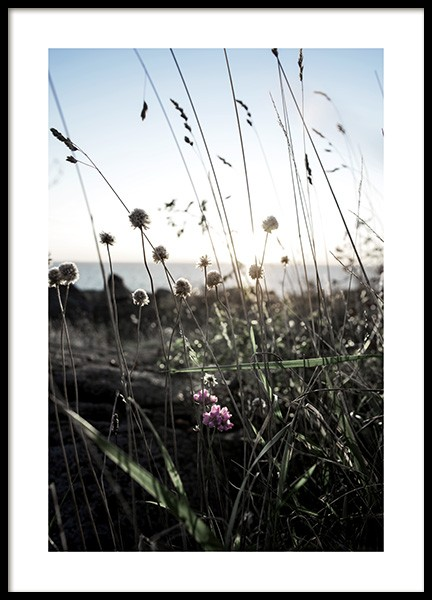 Wildflowers Poster in the group Posters & Prints / Nature at Desenio AB (10708)