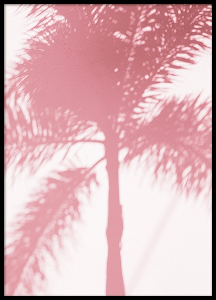 Pink Palm Shadow Poster in the group Posters & Prints / Photography at Desenio AB (10768)