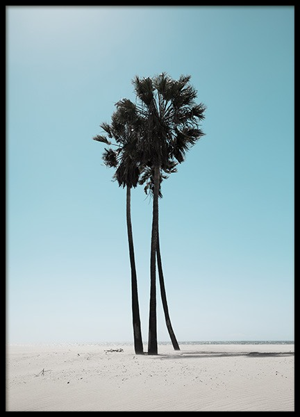 LA Beach Palms Poster in the group Posters & Prints / Nature at Desenio AB (10784)