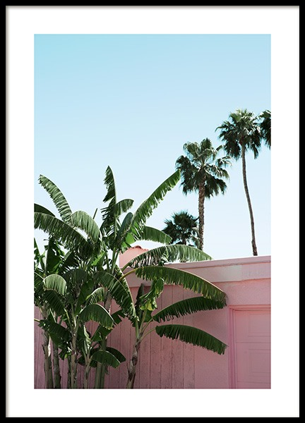 Pink Banana Leaves Poster in the group Posters & Prints / Photography at Desenio AB (10791)