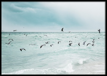 Birds Over Ocean Poster in the group Posters & Prints / Nature at Desenio AB (10817)