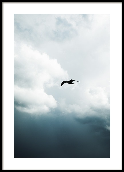 Storm Bird Poster in the group Posters & Prints / Nature at Desenio AB (10818)