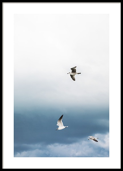 Stormy Birds Poster in the group Posters & Prints / Nature at Desenio AB (10819)