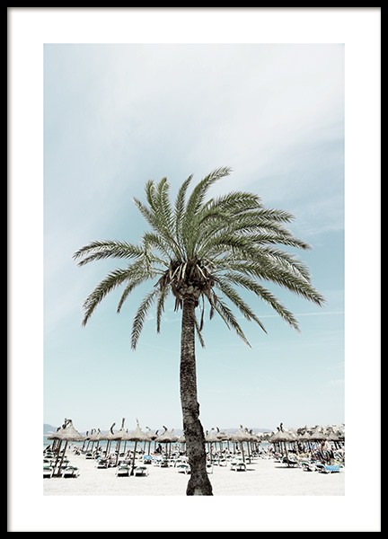 Sunbeds and Palm Tree Poster in the group Posters & Prints / Nature at Desenio AB (10893)