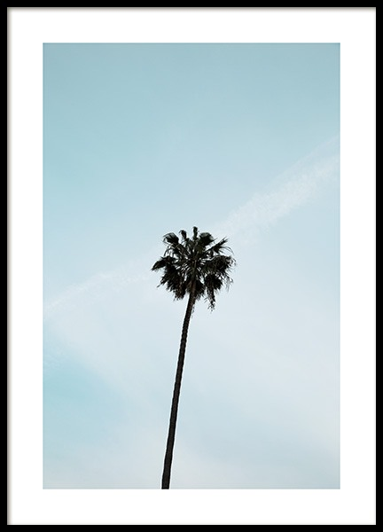 Palm Tree Poster in the group Posters & Prints / Nature at Desenio AB (10955)