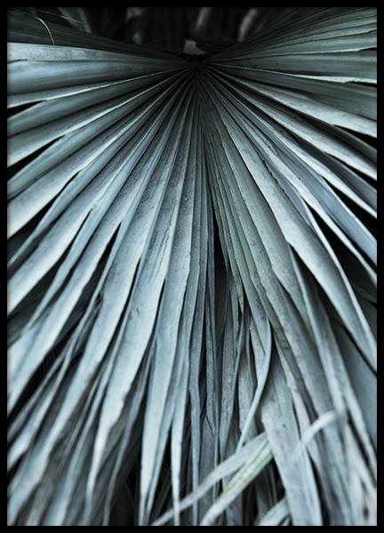 Mint Palms No2 Poster in the group Posters & Prints / Botanical at Desenio AB (10963)