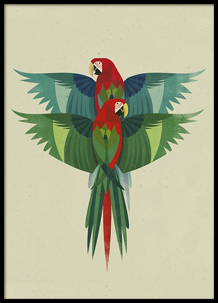 Vintage Ara Poster in the group Posters & Prints / Insects & animals at Desenio AB (11024)