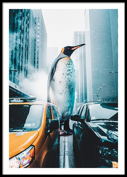 Penguin City Poster in the group Posters & Prints / Insects & animals at Desenio AB (11208)