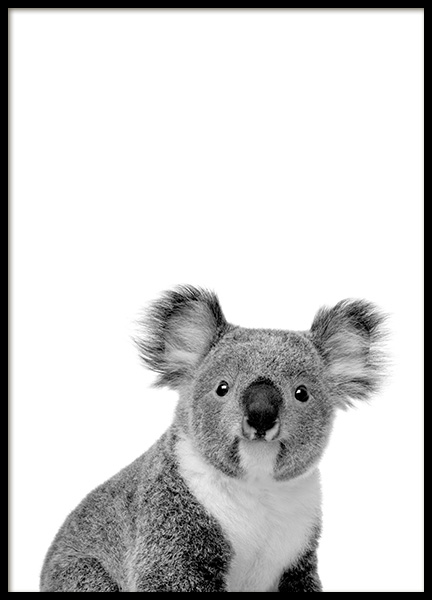 Koala Poster in the group Posters & Prints / Black & white at Desenio AB (11256)