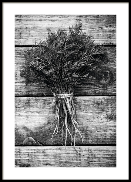 Dill Poster in the group Posters & Prints / Kitchen at Desenio AB (11277)