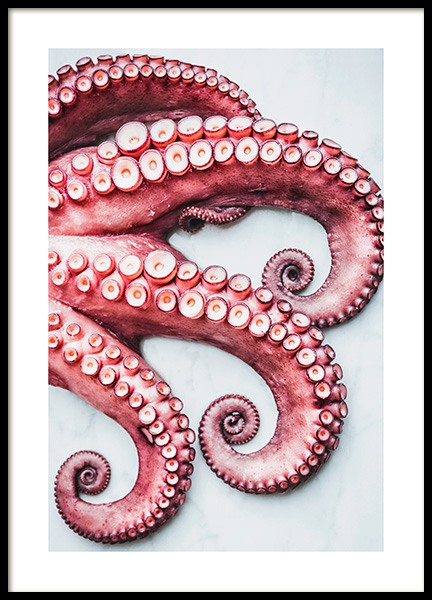 Octopus Arms Poster in the group Posters & Prints / Kitchen at Desenio AB (11519)