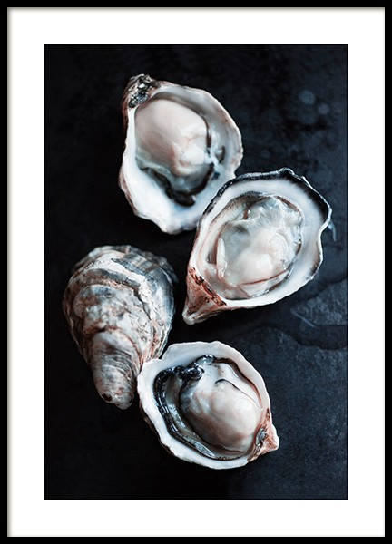 Oysters Close-up Poster in the group Posters & Prints / Kitchen at Desenio AB (11521)