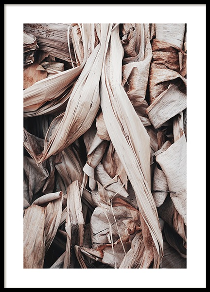 Dry Leaves Poster in the group Posters & Prints / Botanical at Desenio AB (11577)