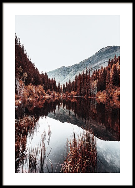 Autumn Lake Poster in the group Posters & Prints / Nature at Desenio AB (11584)