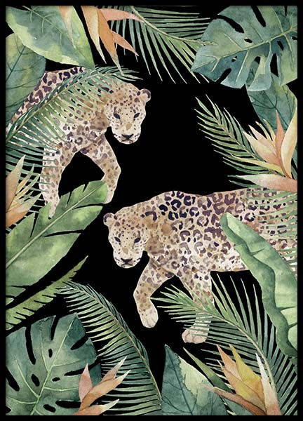 Leopards Poster in the group Posters & Prints / Sizes / 50x70cm | 20x28 at Desenio AB (11617)