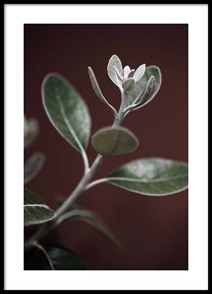 Tiny Leaves No3 Poster in the group Posters & Prints / Botanical at Desenio AB (11657)