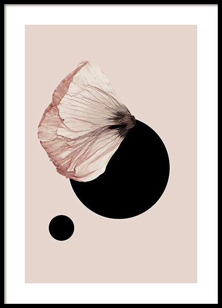 Dried Leaf No3 Poster