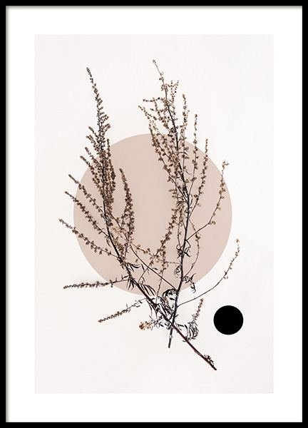 Dried Leaf No4 Poster
