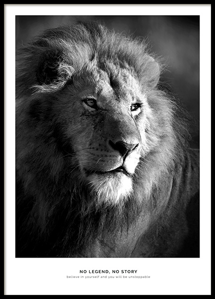 Lion Legend Poster in the group Posters & Prints / Insects & animals at Desenio AB (11855)