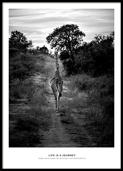 Life is a Journey Poster in the group Posters & Prints / Insects & animals at Desenio AB (11858)