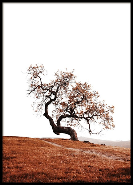 Tree on Hill Poster in the group Posters & Prints / Nature at Desenio AB (11869)