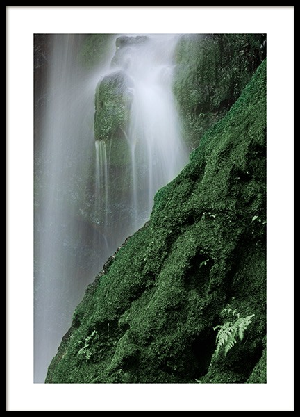 Waterfall in Forest Poster