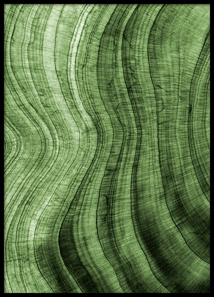 Green Hardwood Poster in the group Posters & Prints / Nature at Desenio AB (12084)