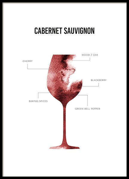 Cabernet Sauvignon Anatomy Poster in the group Posters & Prints / Kitchen at Desenio AB (12120)