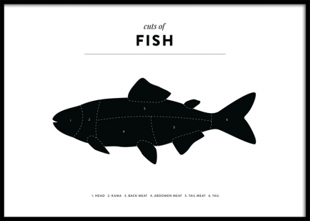 Cuts of Fish Poster in the group Posters & Prints / Kitchen at Desenio AB (12121)