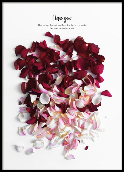 Rose Petals Poster in the group Posters & Prints / Botanical at Desenio AB (12144)